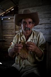 Veguero (cultivateur de tabac), Pinar del Rio, Cuba