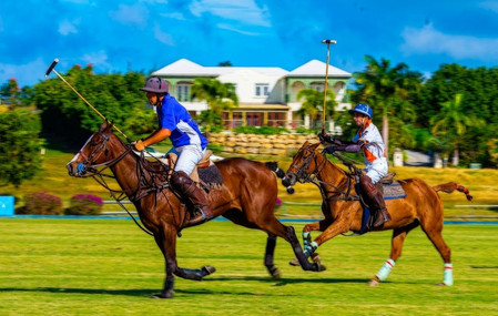 'A Day At Polo' by Glyne Strickland