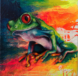 Sian Pampellone 'Red Eye Tree Frog 1'