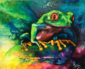 Sian Pampellone 'Red Eye Tree Frog 2'