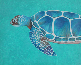 Nicole Metzger 'Turtle Encounter'
