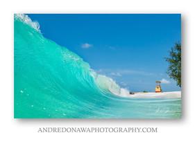 Andre Donowa 'Blue Wonder'