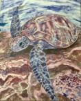 Julia Seymour 'Turtle Life in Pink'