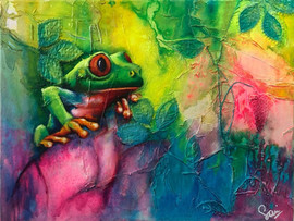 Sian Pampellone 'Red Eye Tree Frog 3'