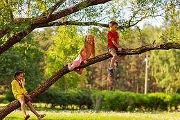 Kućica na drvetu, obavezan deo svakog detinjstva