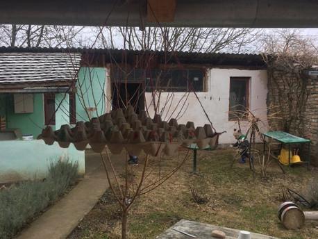 Hranilica za ptice, zimska aktivnost