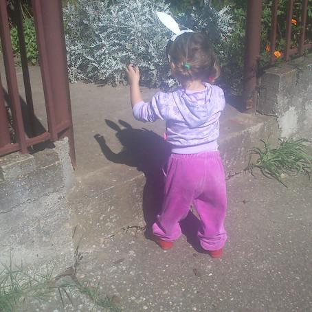 Zoološki vrt, igra smirenja i opuštanja