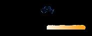instasex nuewvo logo2.png