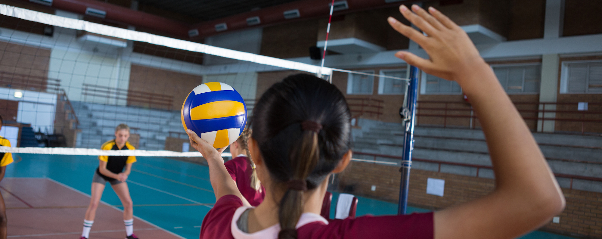 volleyball cropped