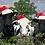 Thumbnail: Jingle Moos