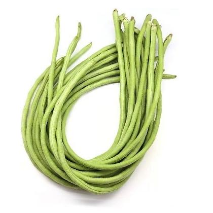 Kacang Panjang 长豆 (500g +/-)