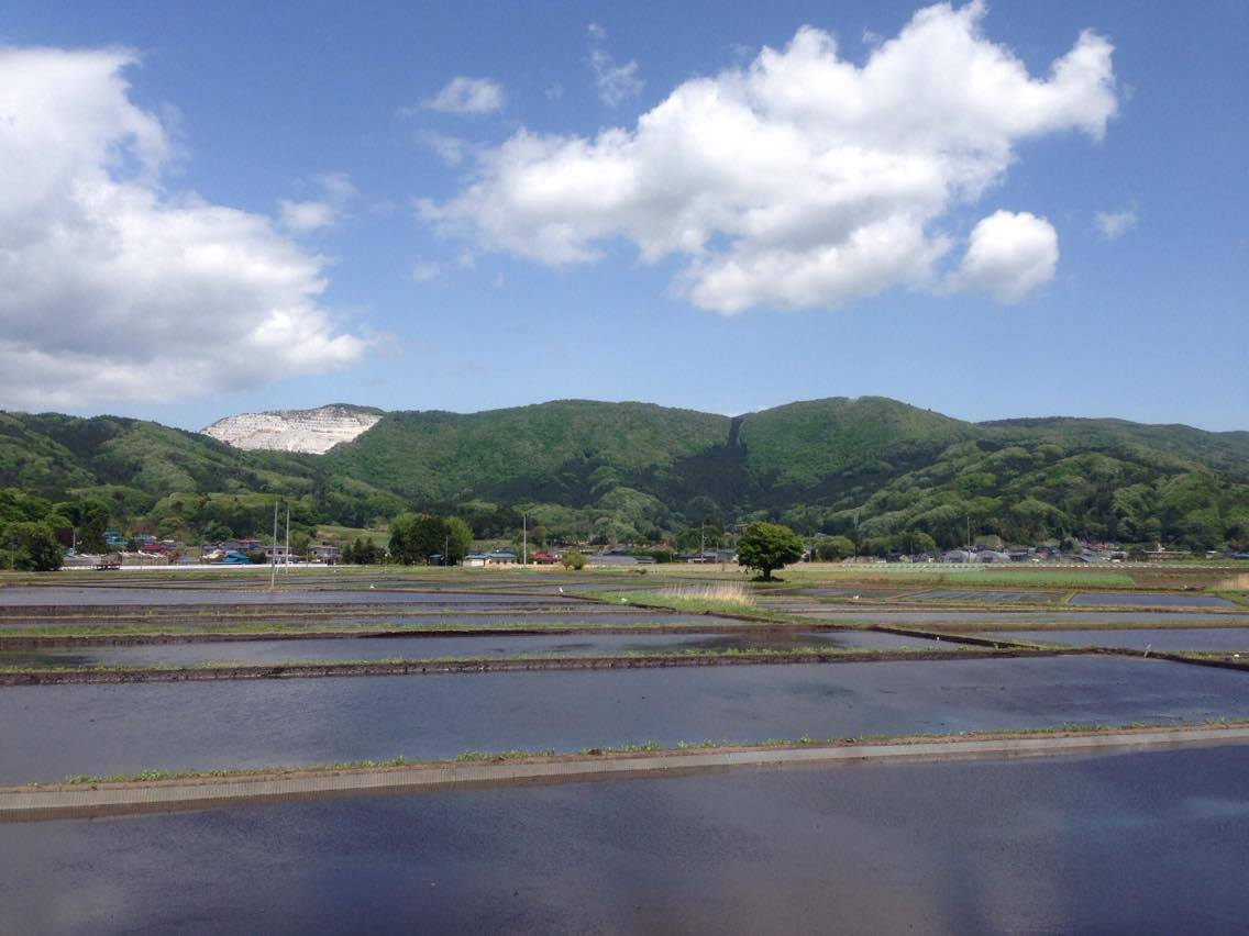 Rice Field ( Abukuma Heightland)