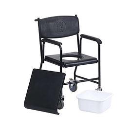 Comode_toilet seat.jpg