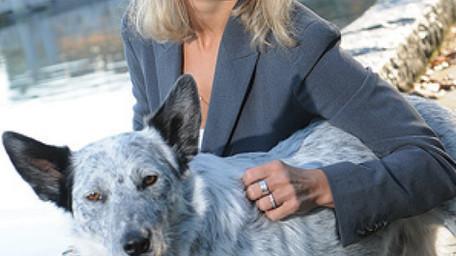 Animal lawyer balks at dog bite bylaw amendment