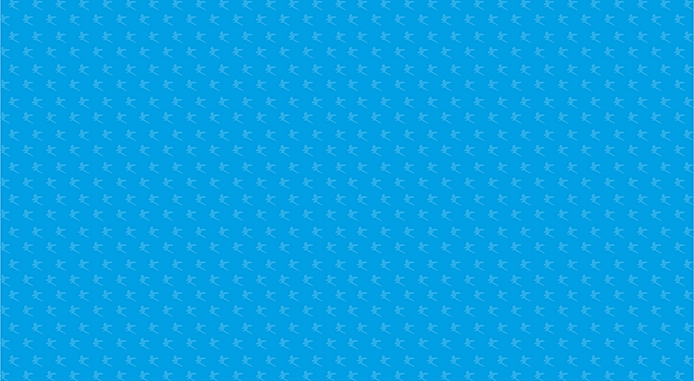 Borregaard_slide02_blue_pattern.png