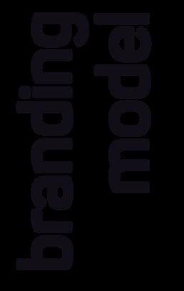 branding_model_type.png