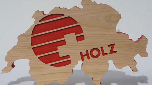 Chalet, Holzbau, Schweizerhol