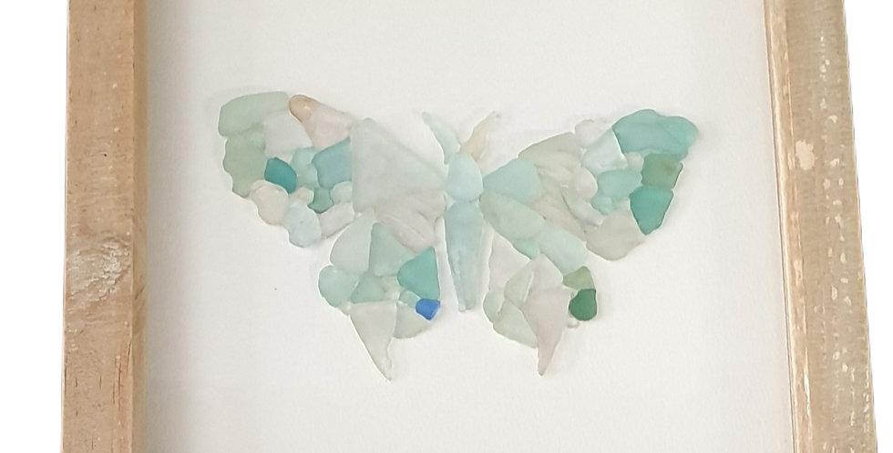 Moth sea glass boxed art