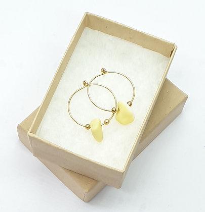 Yellow milk sea glass, 20mm 14k gold hoop earrings