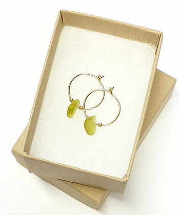 Yellow seaglass, 15mm 14k gold hoop earrings