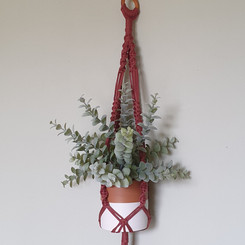 Ethical plant hanger