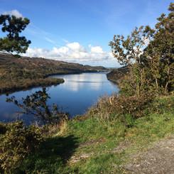 Bare is situated near Caernarfon in Gwynedd
