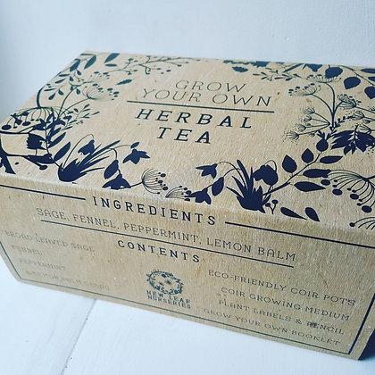 Herbal Tea - Grow Your Own Kit