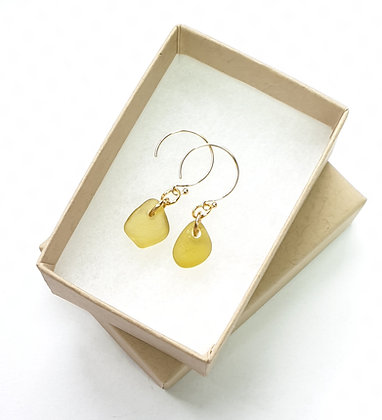 Yellow seaglass droplets on 14k gold earrings