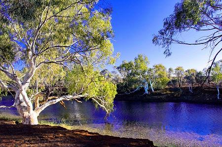 Cattle Pool - near Mt Augustus in outback Western Australia.