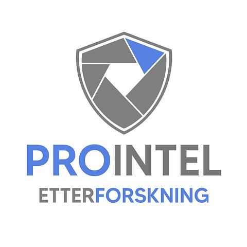 PROINTEL Etterforskning.png