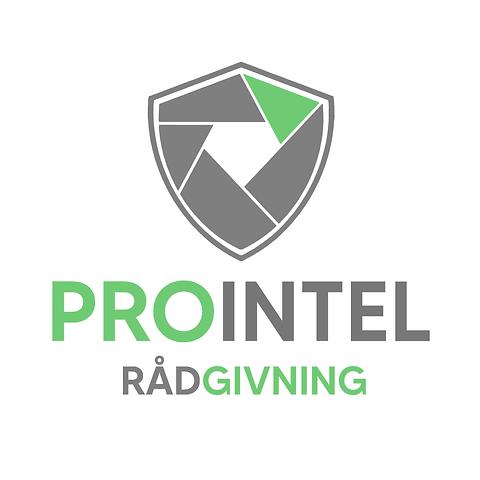PROINTEL_Rådgivning.png