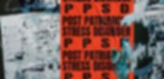 PPSD2.jpg