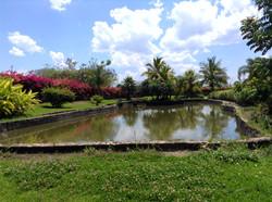 Lago villa toscana 7.jpg