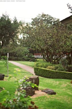Costado de Jardín