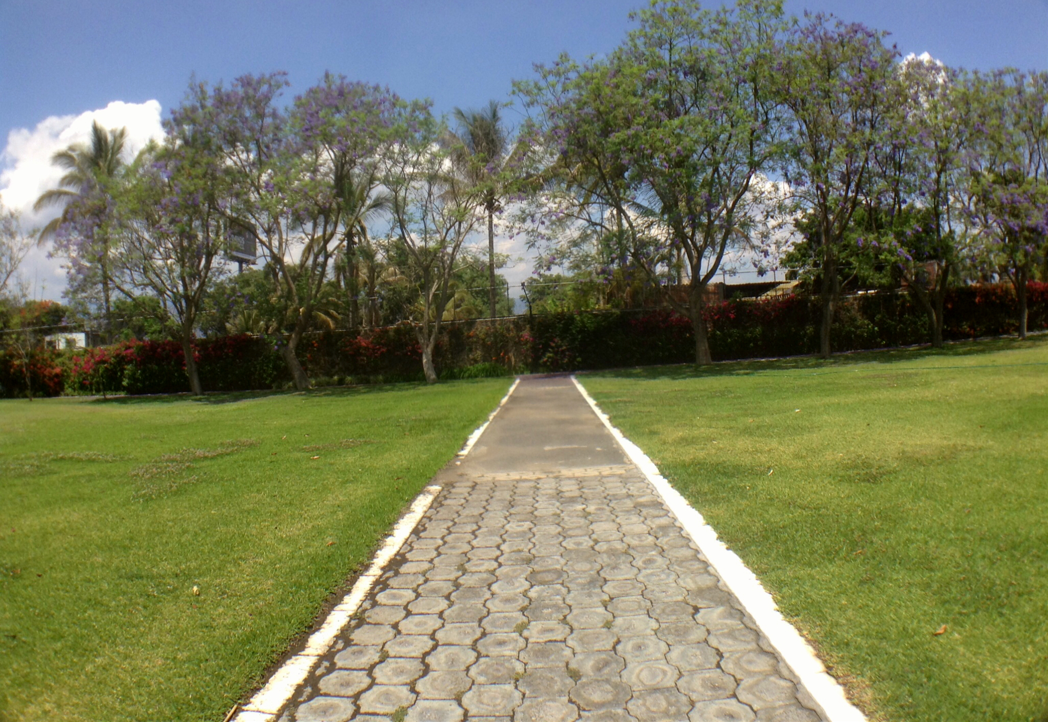 Jardines villa toscana 9.jpg