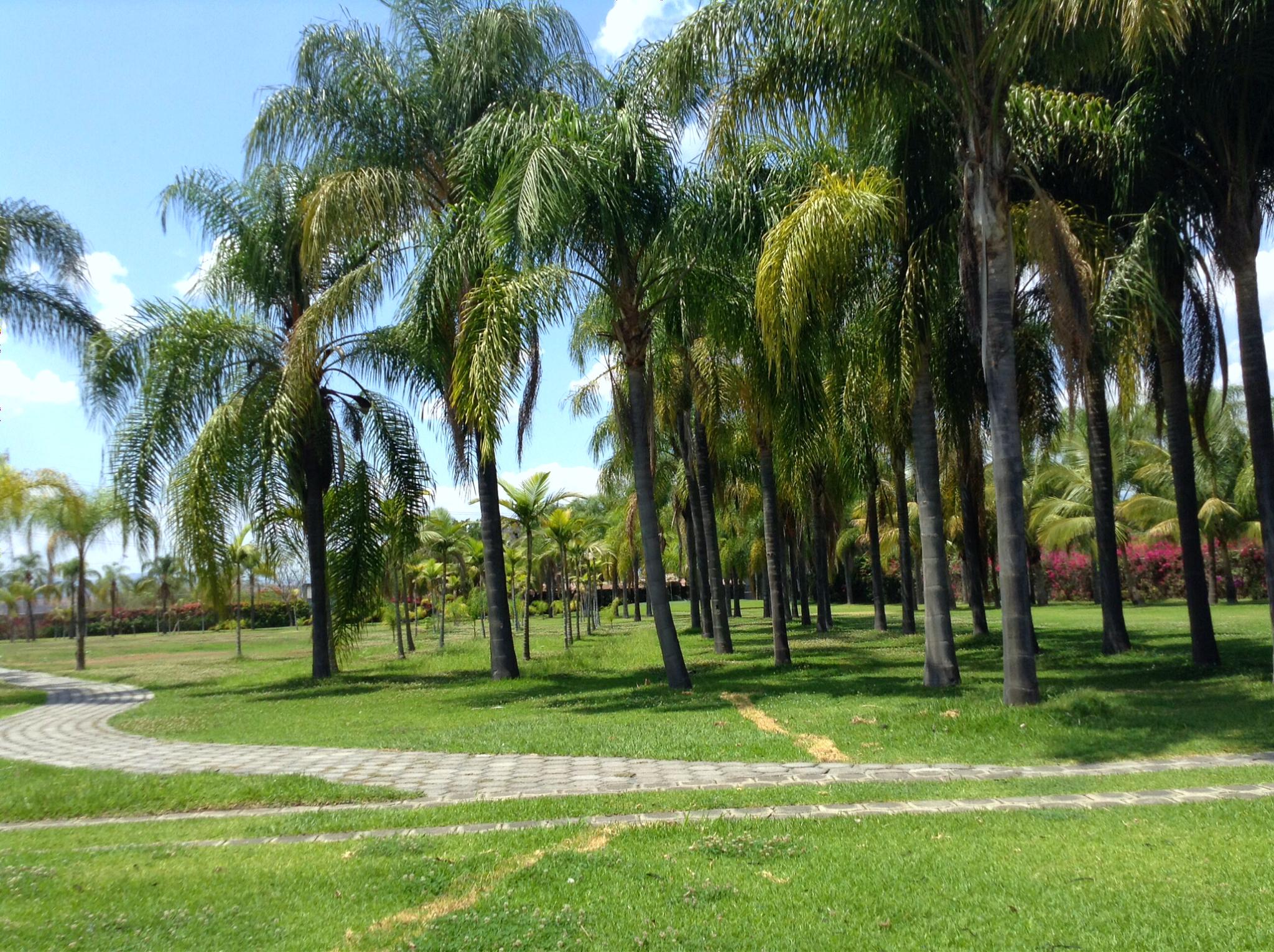 Jardines villa toscana 10.jpg