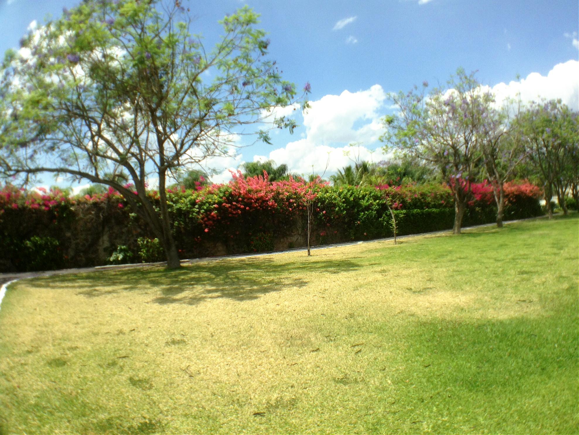 Jardines villa toscana 5.jpg