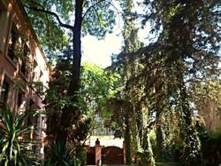 Jardín 1LFJCK