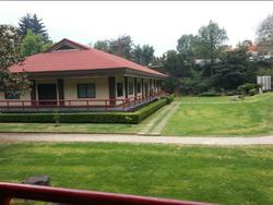 Jardin central 2