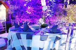 Mobiliario Tiffany para Eventos