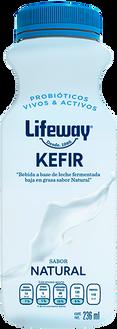 Lifeway Kéfir México