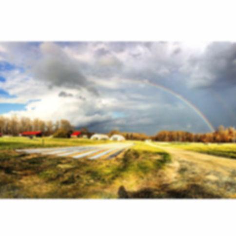 farm with rainbow over it