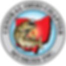 new logo color TFF.tiff