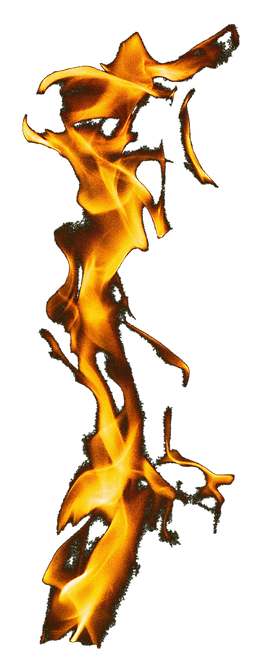 Fire Small_edited_edited_edited.png