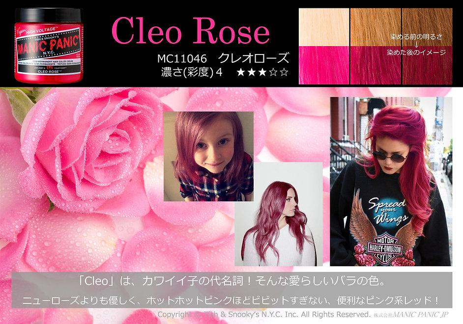 Cleo Rose.JPG