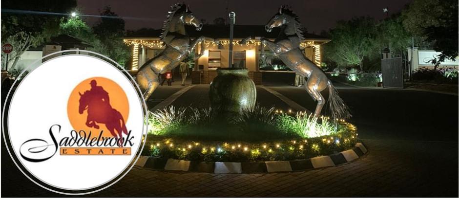 Saddlebrook's December Newsletter