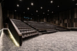 SLP-Red-Carpet-Cinema-Interior.jpg