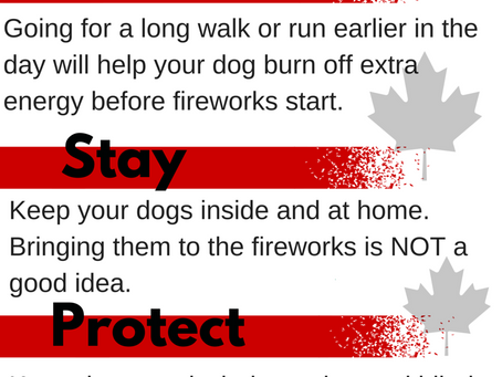 Tips for a safe Canada Day
