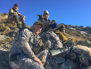 Hunting guides in New Zealand