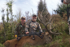 Guys bow hunted New Zealand Red Stag